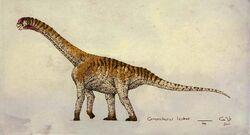 Camarasaurus lentus by commander salamander-d37i81n bf05