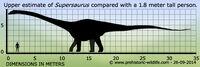 Supersaurus-size