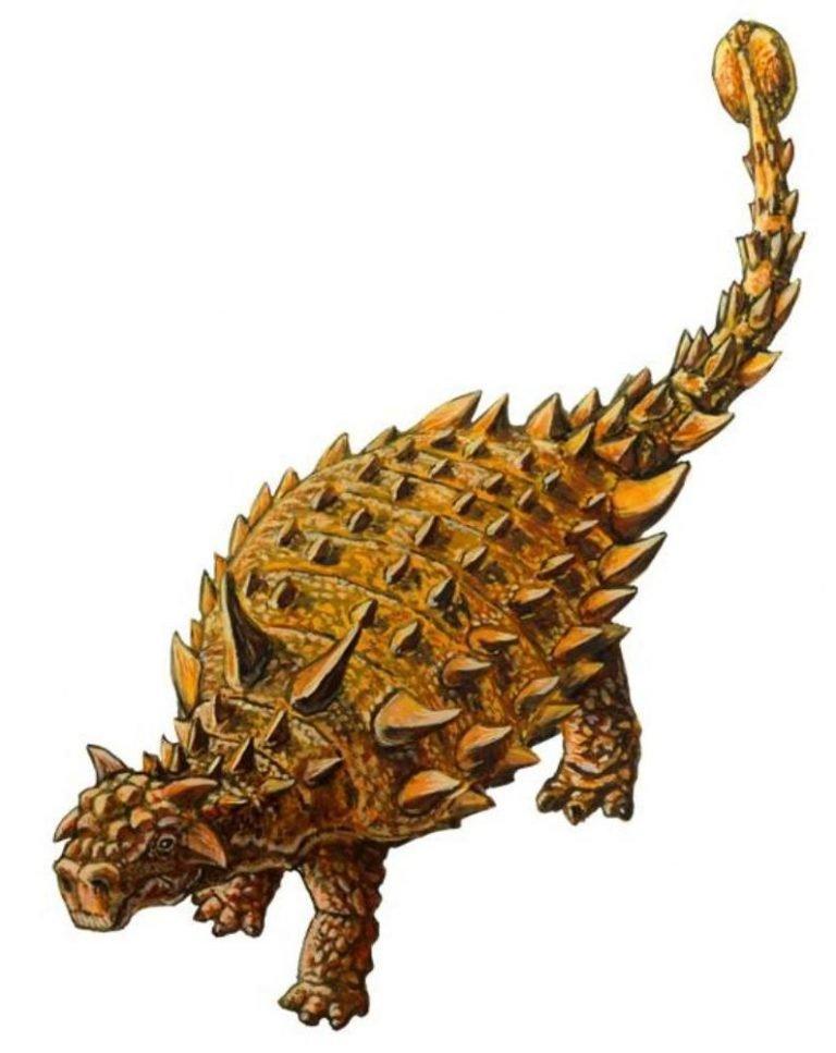 Нодоцефалозавр