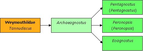 Археогност