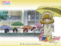 Pretty Cure Online SmPC wall smile 19 1 S