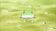 Las chicas se encuentra con una rana