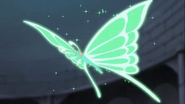 Mariposa verde komachi