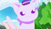 KKPCALM 34 Crystal Cat senses something