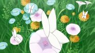 37. Las Mariposas posando en algunas flores