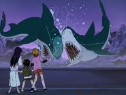 Tiburones golpean cristal