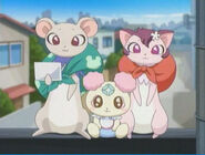 Tarte, Azukina y Chiffon se van