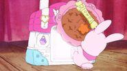 Rabirin saca la comida de Latte