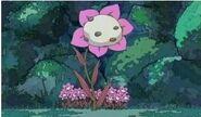 Flor de Daifuku