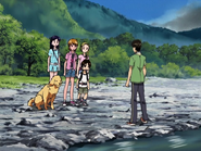 Takeshi anuncia que no iran a la cascada