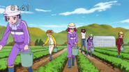 Trabajo de granja (2)