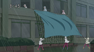 Proteccion cortina tifon