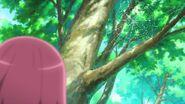 Nodoka ve la telaraña con gotas de rocío