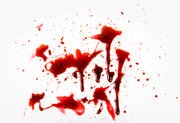 Blood-splat1.jpg