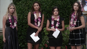 Pll~5x14-1.png