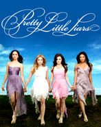 S3 PLL Poster2