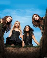 S1 PLL Poster-Blank2