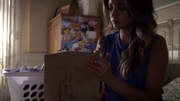 Paily-5x16.png