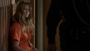 Pll~5x15-1.png