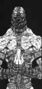 Temozarela-Crippled Body 001