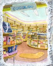 Cosmetics Shop (PM5)