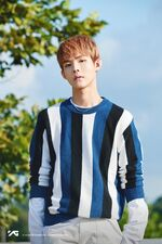Lee Midam YG Profile 1