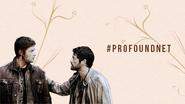 ProfoundNet Banner