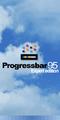 Progressbar 95 Expert Startup