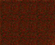 Ss (2015-02-08 at 05.16.43).jpg