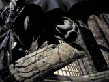 Бэтмен/Брюс Уэйн (комикс)