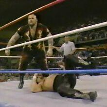 1.16.88 WWF Superstars.00009.jpg