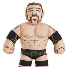 WWE Brawlin' Buddies 1 Sheamus.jpg