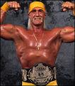 24 Hulk Hogan 5