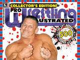 2013 PWI Top 500 Wrestlers