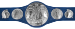 WWE Smackdown Tag Team Championship.png