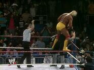 Hulk Hogan The Ultimate Anthology 12