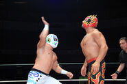 CMLL Domingos Arena Mexico (January 13, 2019) 15