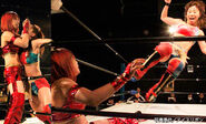 December 27, 2014 Ice Ribbon 1
