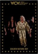 1991 WCW Collectible Trading Cards (Championship Marketing) Ric Flair 68