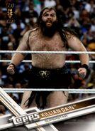 2017 WWE (Topps) Then, Now, Forever Killian Dain 172