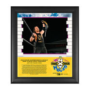 Adam Cole NXT TakeOver In Your House 2020 15 x 17 Limited Edition Plaque