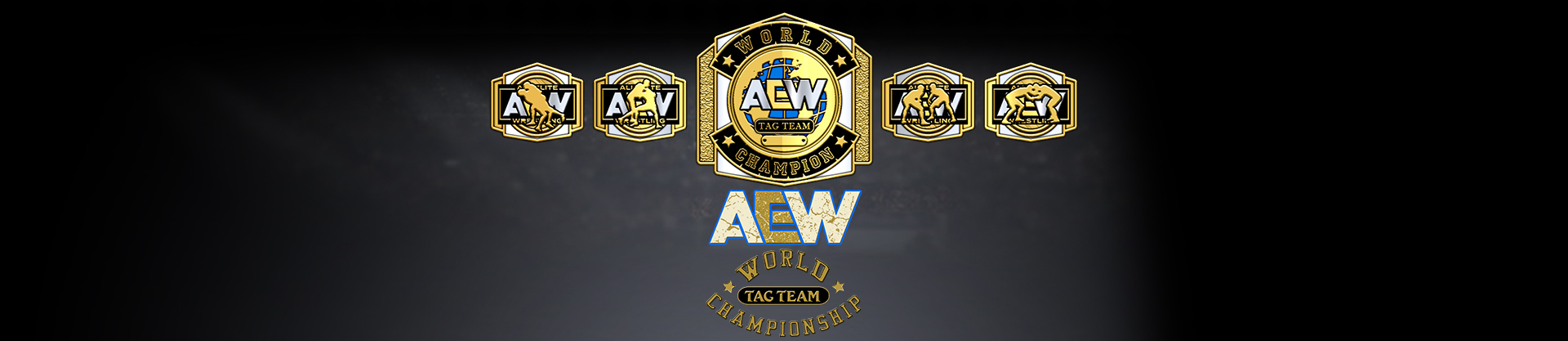 AEW World Tag Team Championship/Champion gallery