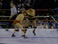 January 30, 1993 WWF Superstars of Wrestling.00018