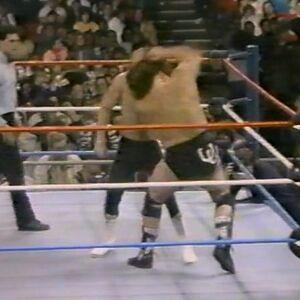 1.16.88 WWF Superstars.00011.jpg