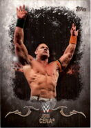 2016 Topps WWE Undisputed Wrestling Cards John Cena 16