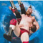 2017 WWE Undisputed Wrestling Cards (Topps) Sheamus 35.jpg