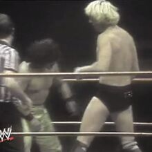 The Triumph & Tragedy of World Class Championship Wrestling 20.jpg