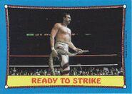 1987 WWF Wrestling Cards (Topps) Ready To Strike 24