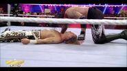 Best of WrestleMania Theater.00047