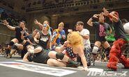 DDT Judgement 2015 4
